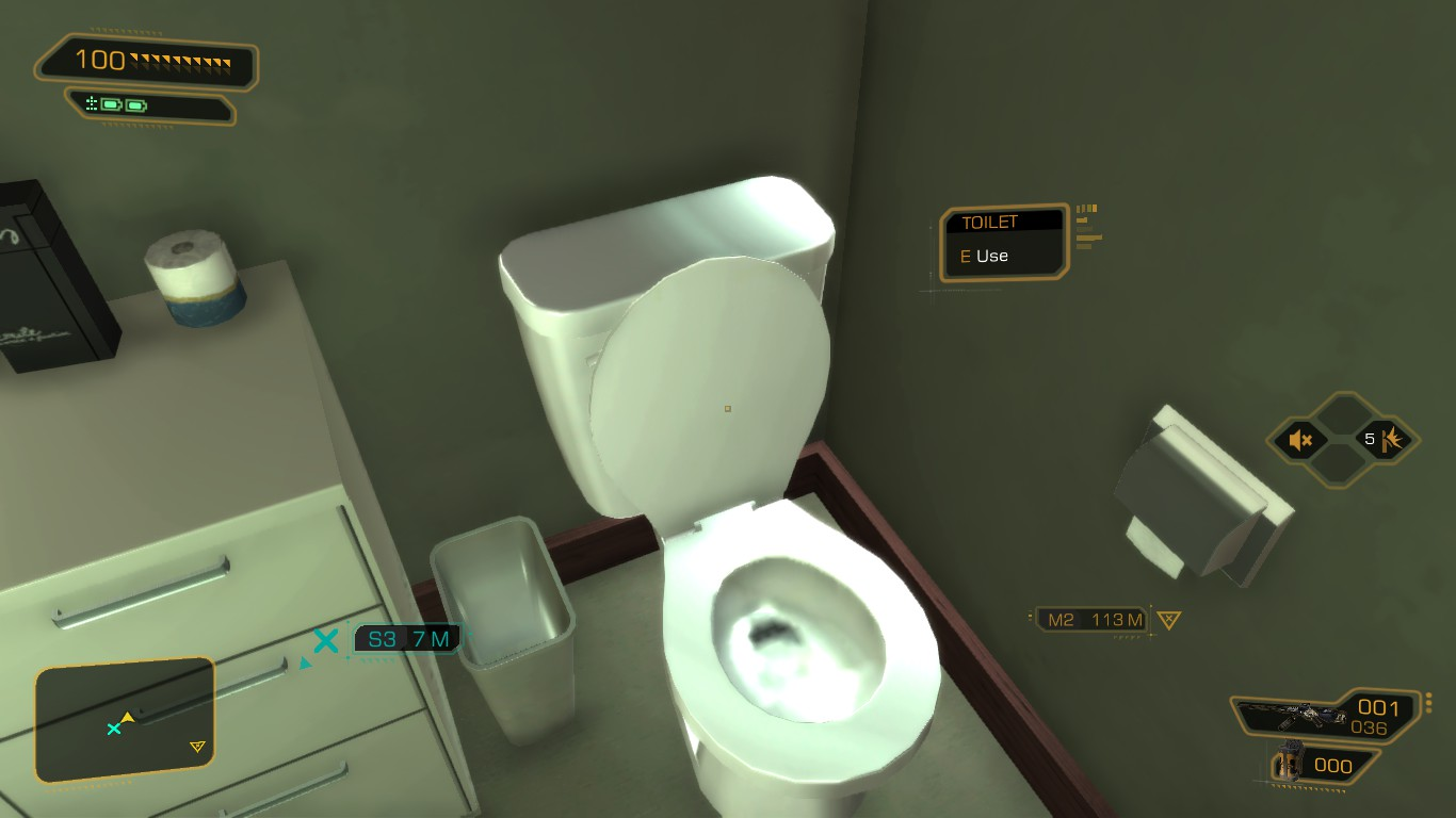 Why Can I Always Flush Toilets In Videogames?